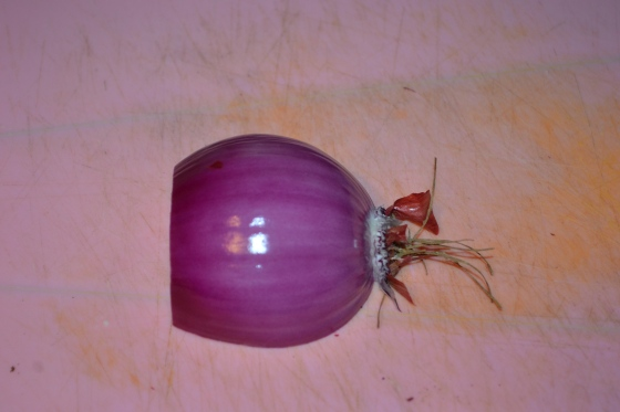 Peel the onion; you will be left with a naked onion that looks like this.
