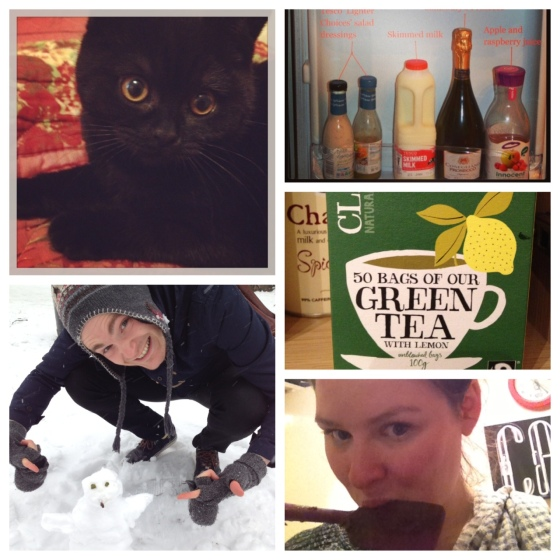 D.C; fridge photos; snow is Russell Square; green tea; licking the spoon.